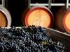 Wine Processing